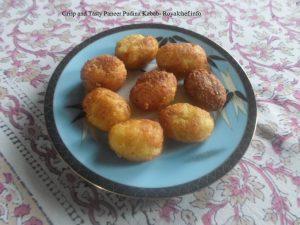 Paneer Pudina Kabab