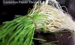Lasnachya Patichi Thecha-Chutney
