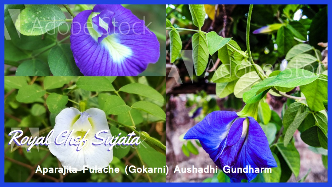 Aparajita Fulache (Gokarni) Aushadhi Gundharm