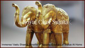 Immense Vastu Shastra Benefits of Keeping Elephant of Statue At Home