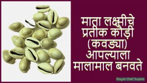 Symbol of Goddess Lakshmi Cowries