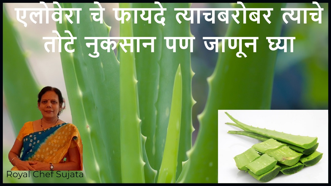 Advantage and disadvantage of Aloe vera