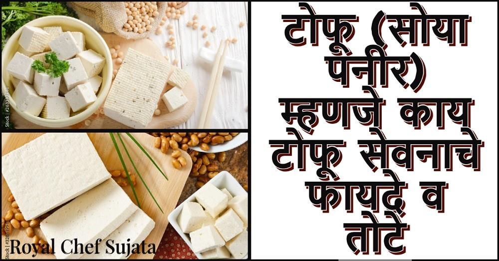Tofu Soya Paneer